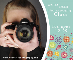 Other Photography Classes From Wendi